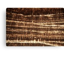 Thin section of a calcareous stalagmite Canvas Print