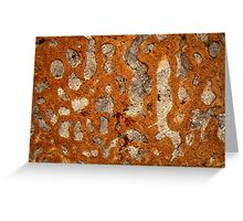 Dinosaur bone under the microscope Greeting Card