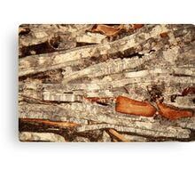 Thin section of fossil calcareous shell fragments  Canvas Print