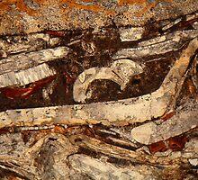 Jurassic under the microscope by Zosimus