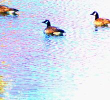 Sunny Abstract Geese Sticker