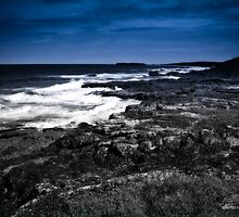 Goanna Headland - Evanshead NSW by Jennifer Craker