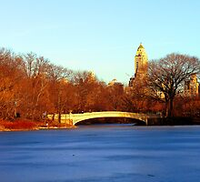 DON'T SKATE WHERE THE ICE IS THIN by KENDALL EUTEMEY