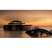 Starlings above West Pier Photographic Print
