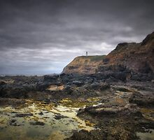Cape Schanck Rockpools & Lighthouse, Victoria by Darren Greenwell