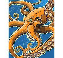Tangerine Octopus on Blue Background Photographic Print