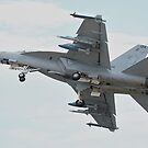 Super Hornet by Barrie Collins