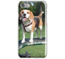 Beagle with the Spaniels iPhone Case/Skin