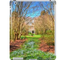 Mansion at Chippokes iPad Case/Skin