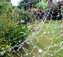 garden web by ajax