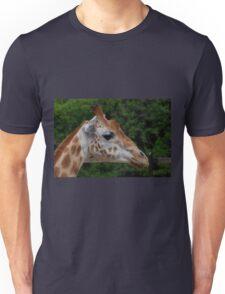 Giraffe,  Taronga Park Zoo, Sydney Unisex T-Shirt
