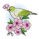 White-eye and sakura blossom by oksancia