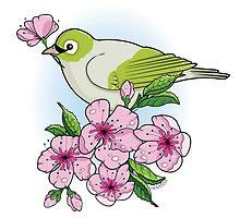 White-eye and sakura blossom by oksancia