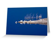 Salt Twigs Floating in an Island of Blue Greeting Card