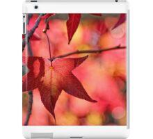 Autumn Colors iPad Case/Skin