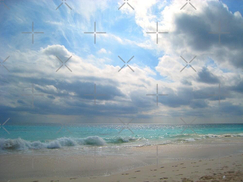 Elbow Beach by Christine Wilson