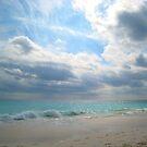 Elbow Beach by Christine Anna Wilson