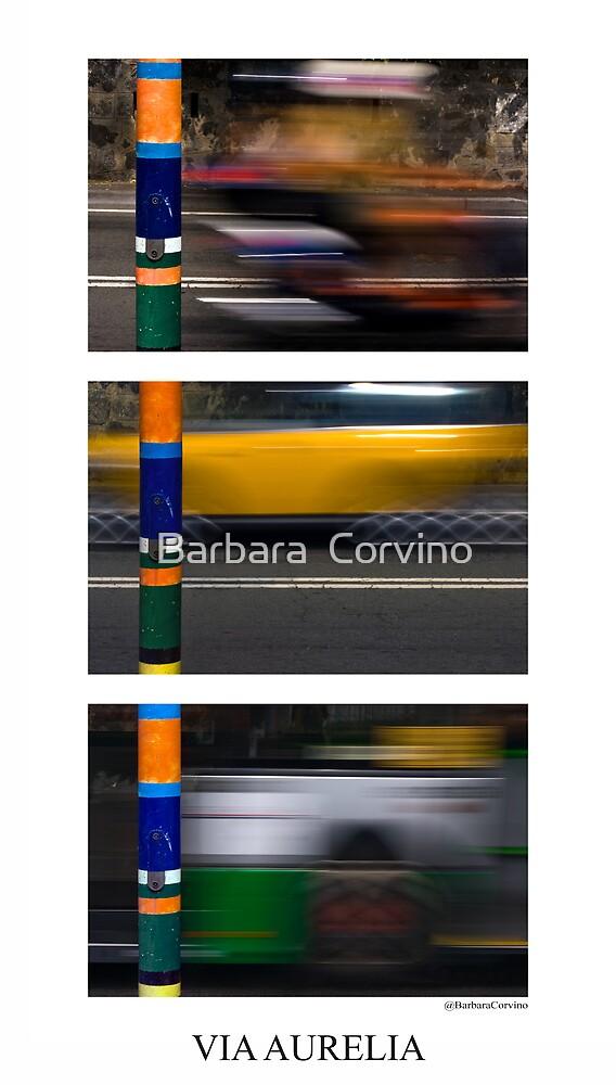 Via Aurelia by Barbara  Corvino