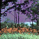 purple sky by Sandra Hopko
