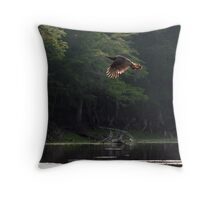 Swept with Light Throw Pillow