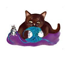 Blue Ball of Yarn for Mouse and Kitten Photographic Print