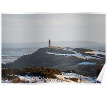 Distant Scrabo Poster