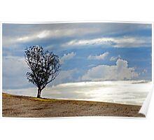 Hill, Sky & Tree Poster