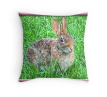 Peter Cottontail Throw Pillow