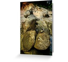 Not What It Seems - HDR Greeting Card