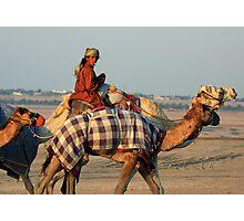 Camel Lite Photographic Print