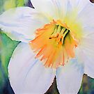 Narcissus by Ruth S Harris