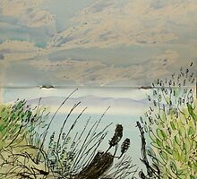 afternoon view great oyster bay tasmania by donnamalone