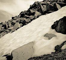 New Snow, Ancient Rock--Mt Rainier by Tim Cowley