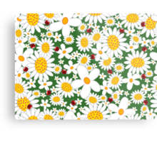 Whimsical Summer White Daisies & Red Ladybugs Metal Print