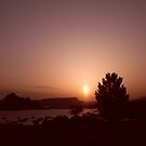Sunrise @ Lake Powell by Finbarr Reilly