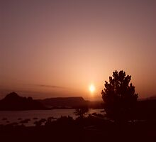 Sunrise @ Lake Powell by Finbarr Reilly