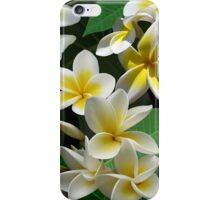Plumeria Flowers iPhone Case/Skin
