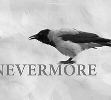Nevermore by luckypixel