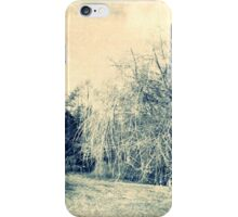 AUTUMN LANDSCAPE iPhone Case/Skin