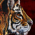 tiger portraite by dnlddean
