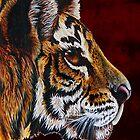 tiger portraite by dnlddean