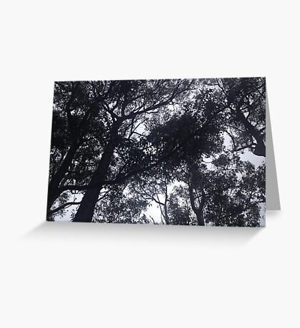 Scary Trees Greeting Card