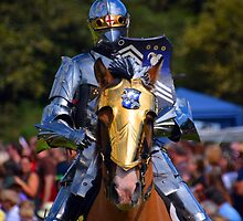 Knight in Armour by DTphotography Dave & Tatiana