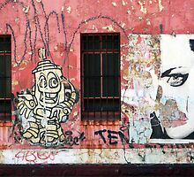 Brunswick Street Graffiti by Roz McQuillan