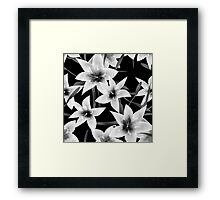 Seamless pattern with white lilies monochrome texture on black background Framed Print