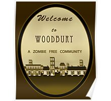 The Walking Dead - Welcome to Woodbury Poster