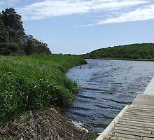 Aire River, Ottaway, Victoria by thebeachdweller