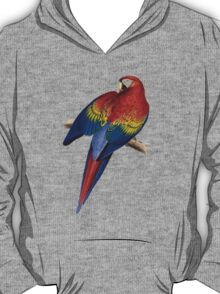 Illustration of A Scarlet Macaw Isolated On White T-Shirt