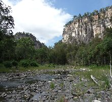 Carnarvon Gorge, Central Queensland by Wendy 00000