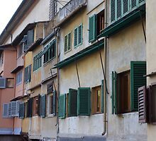 Ponte Vecchio Shutters by phil decocco